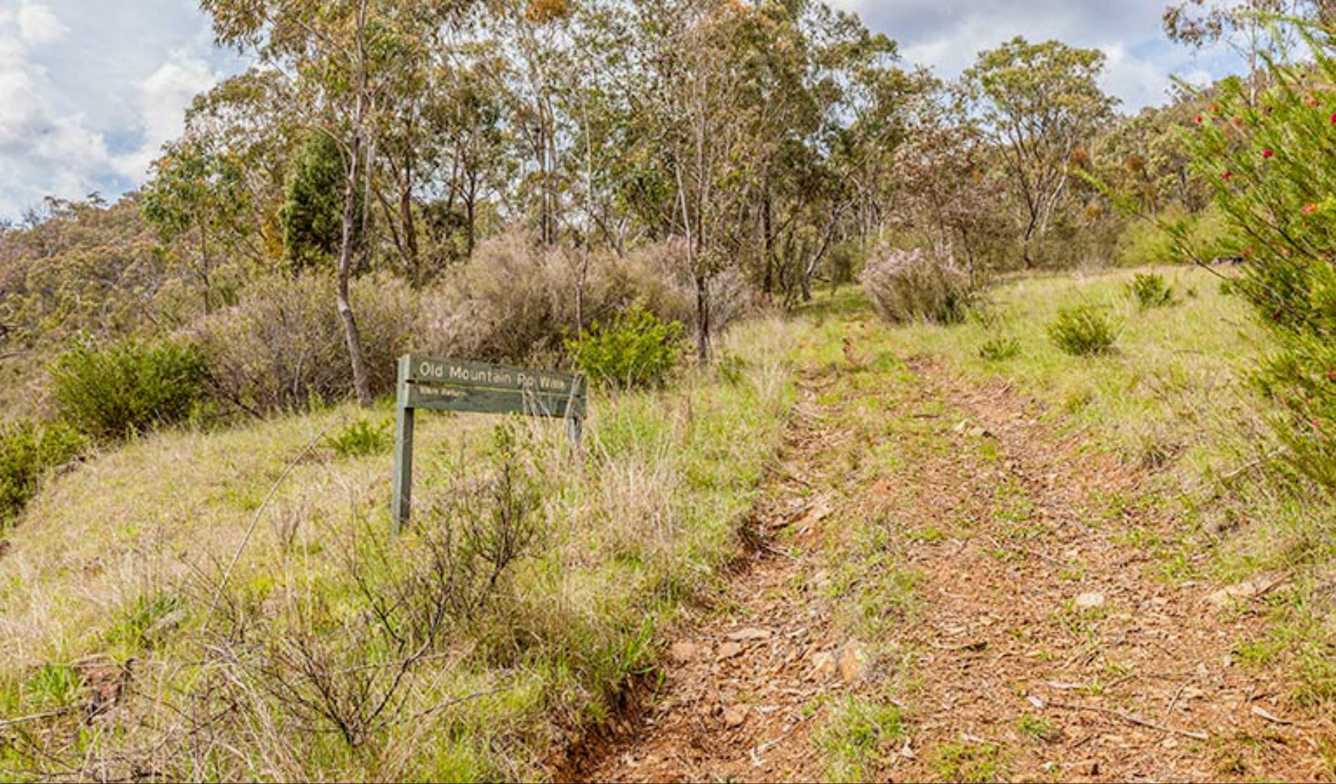 Old Mountain Road Walking Track - Tourism Gold Coast