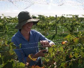 Kingsdale Wines - Tourism Gold Coast
