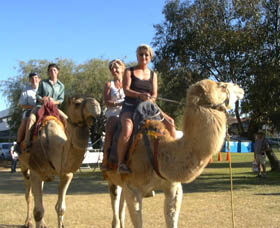 Calamunnda Camel Farm - Tourism Gold Coast