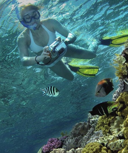 Calypso Reef Charters - Tourism Gold Coast
