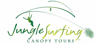 Jungle Surfing Canopy Tours and Jungle Adventures Nightwalks - Tourism Gold Coast