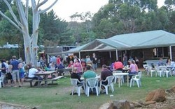 Bush Shack Brewery - Tourism Gold Coast