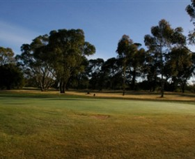 Winchelsea Golf Club - Tourism Gold Coast