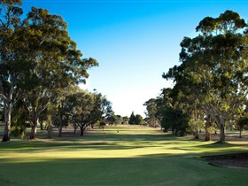 Loxton Golf Club - Tourism Gold Coast