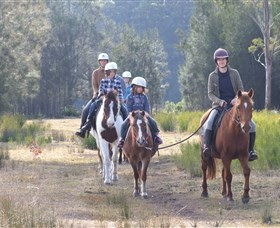 Horse Riding at Oaks Ranch and Country Club - Tourism Gold Coast