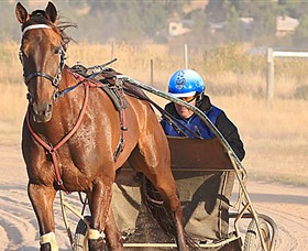 Ballarat  District Trotting Club - Tourism Gold Coast