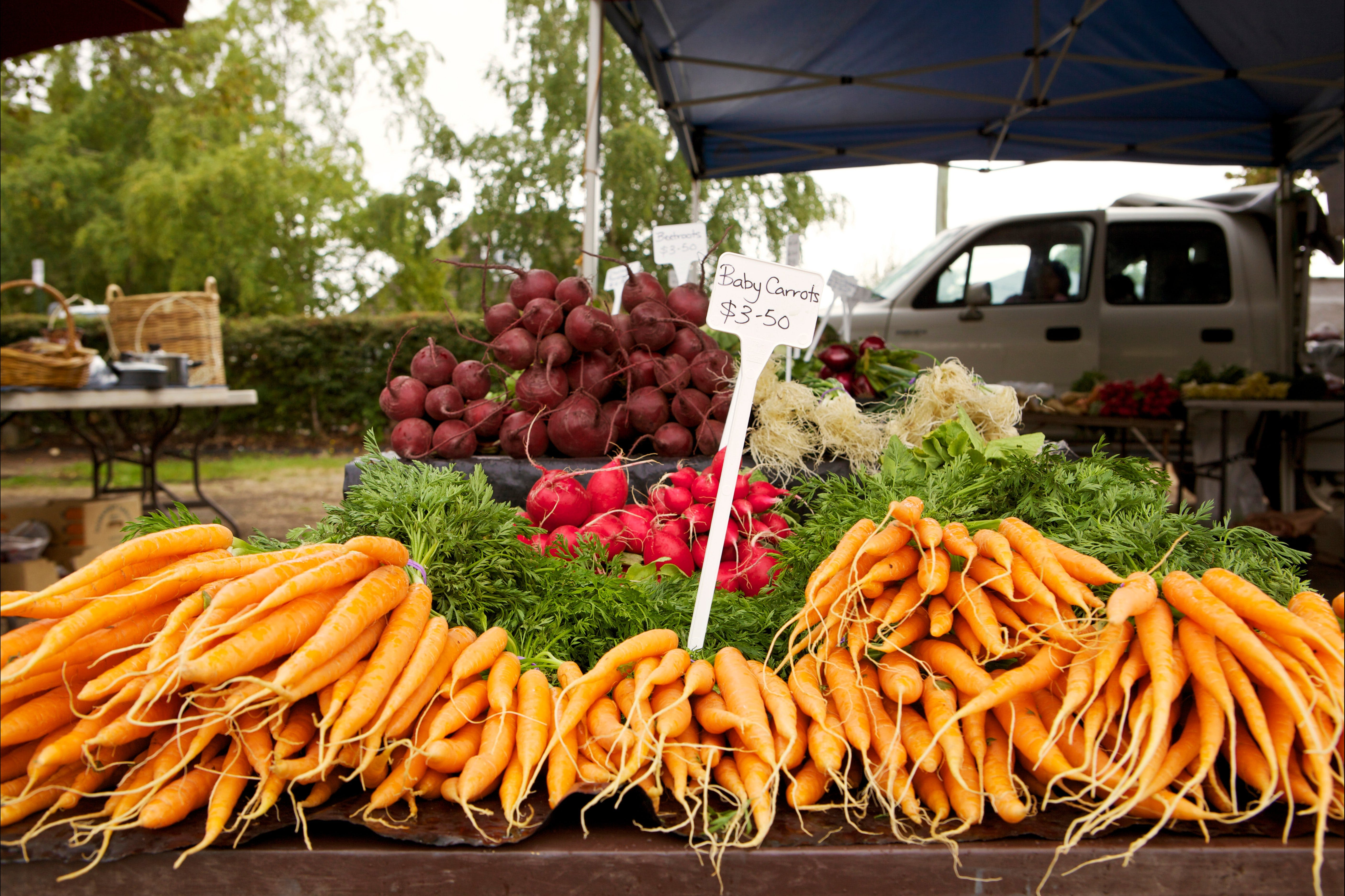 Evandale Market - Weekly - Tourism Gold Coast