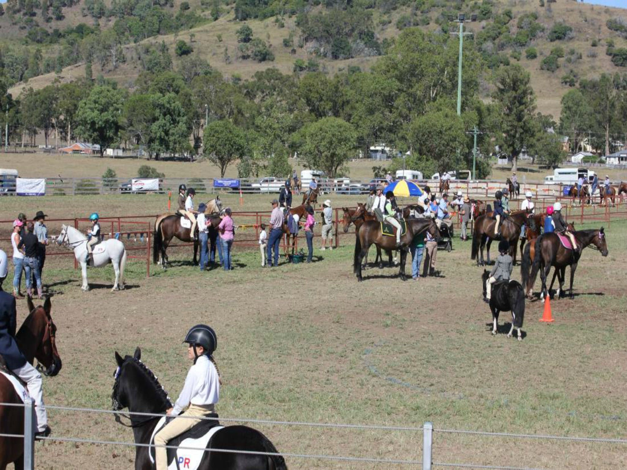 Gresford Agricultural Show - Tourism Gold Coast