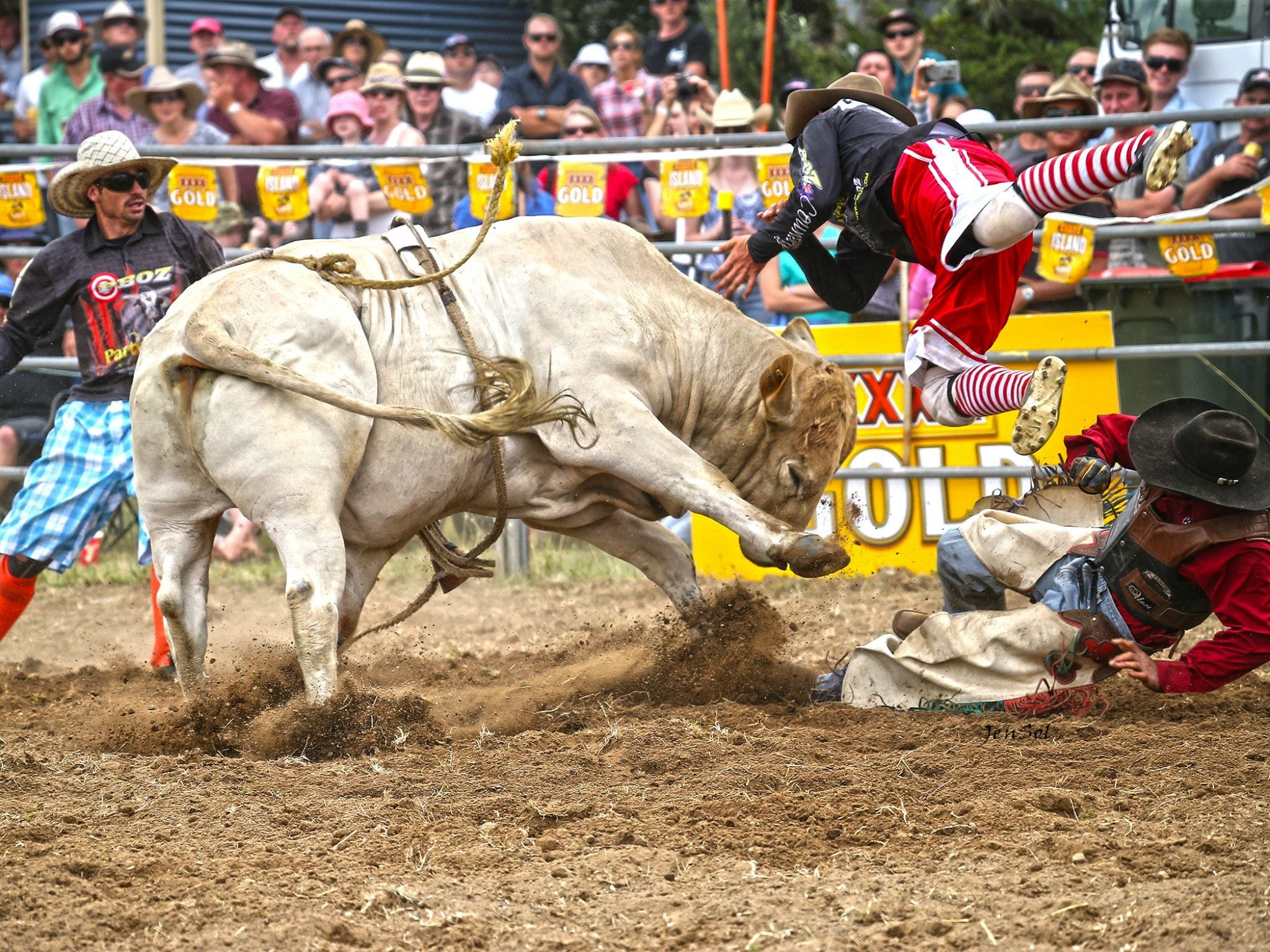 Jindabyne's Man From Snowy River Rodeo - Tourism Gold Coast