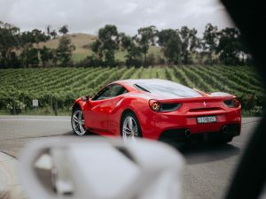 The Prancing Horse Supercar Drive Day Experience - Melbourne Yarra Valley - Tourism Gold Coast