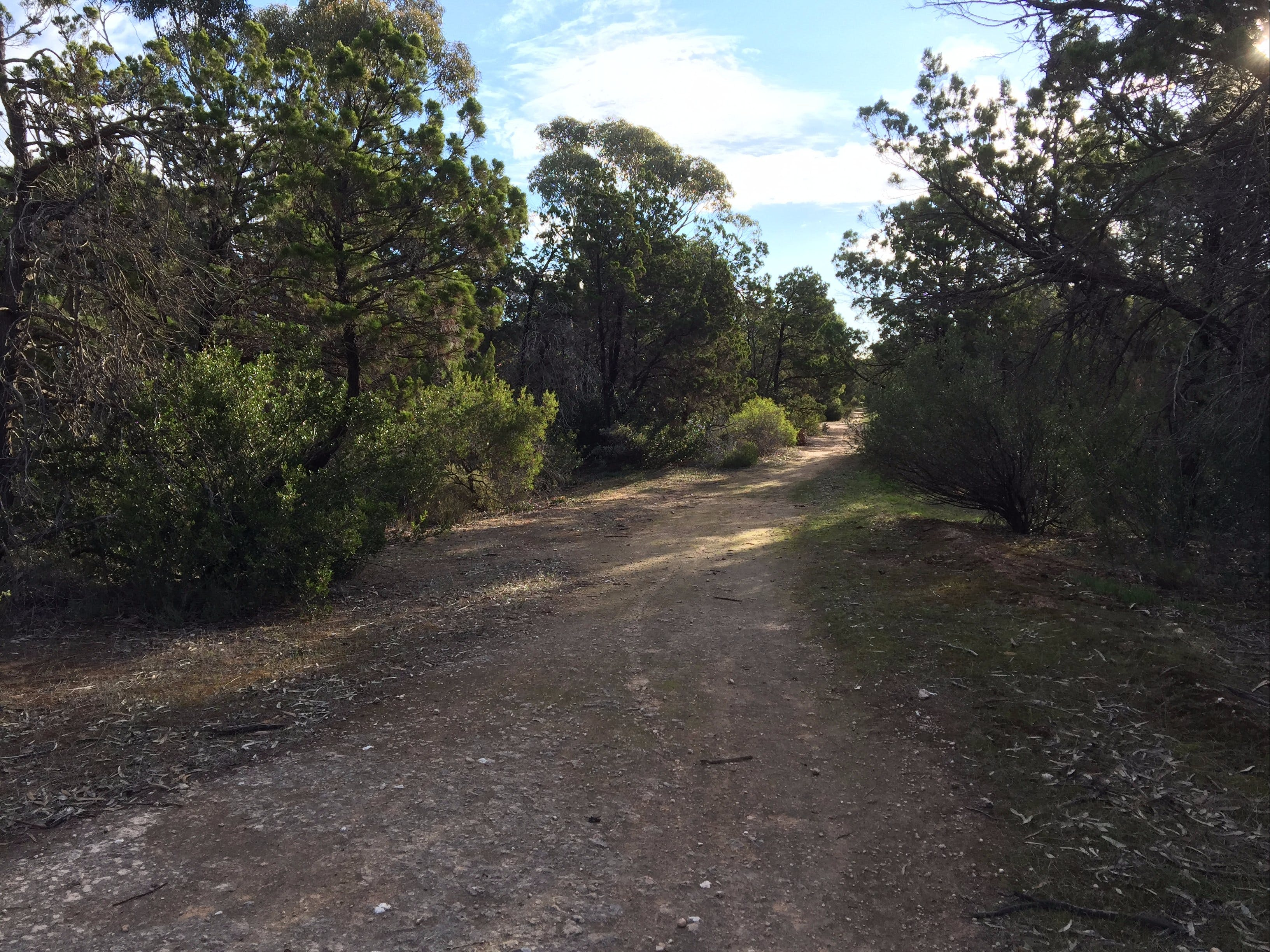 Victoria Park Moonta monthly walks - Tourism Gold Coast