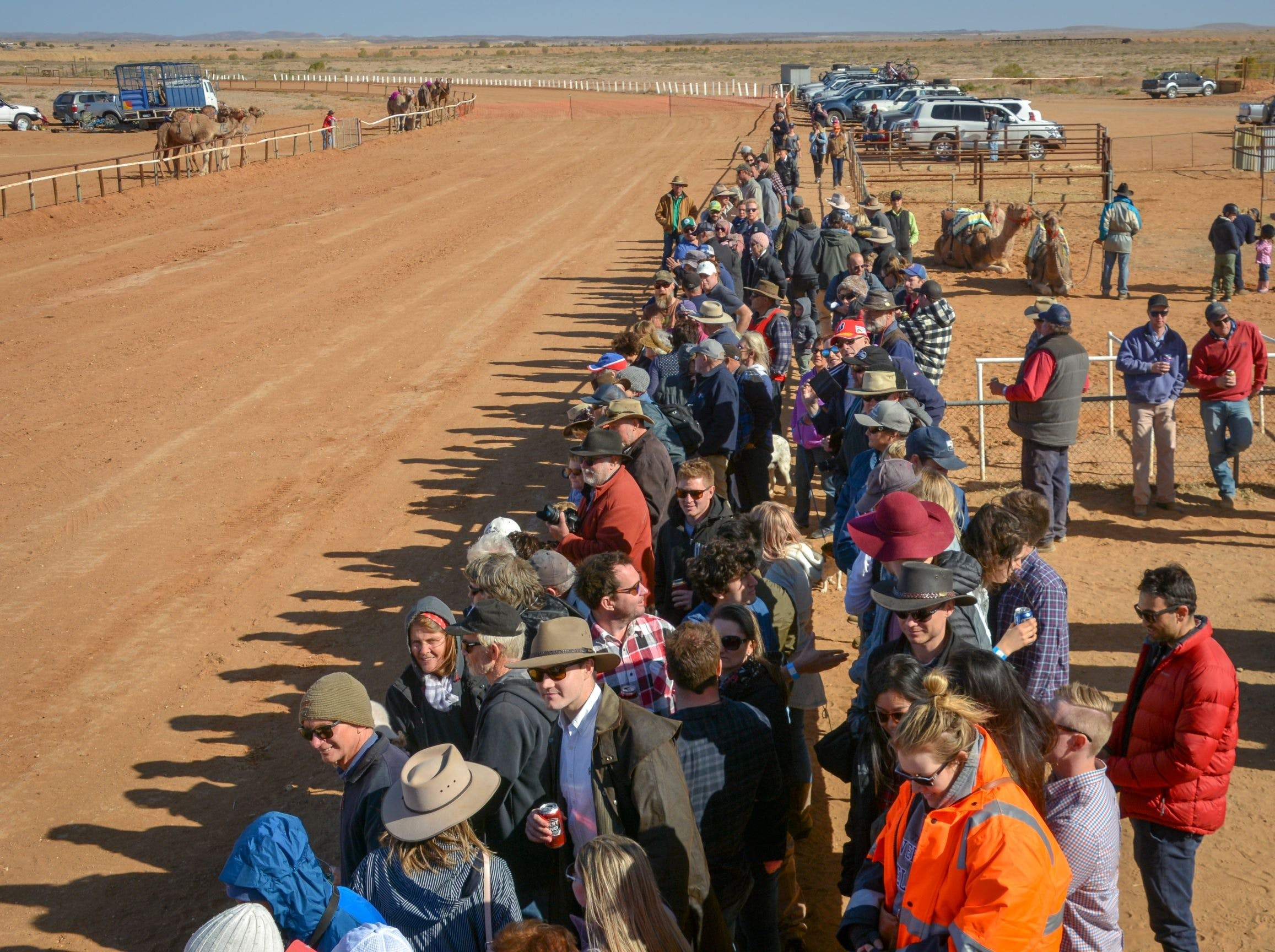 28th Marree Australasian CAMEL CUP 3 July 2021 - Tourism Gold Coast