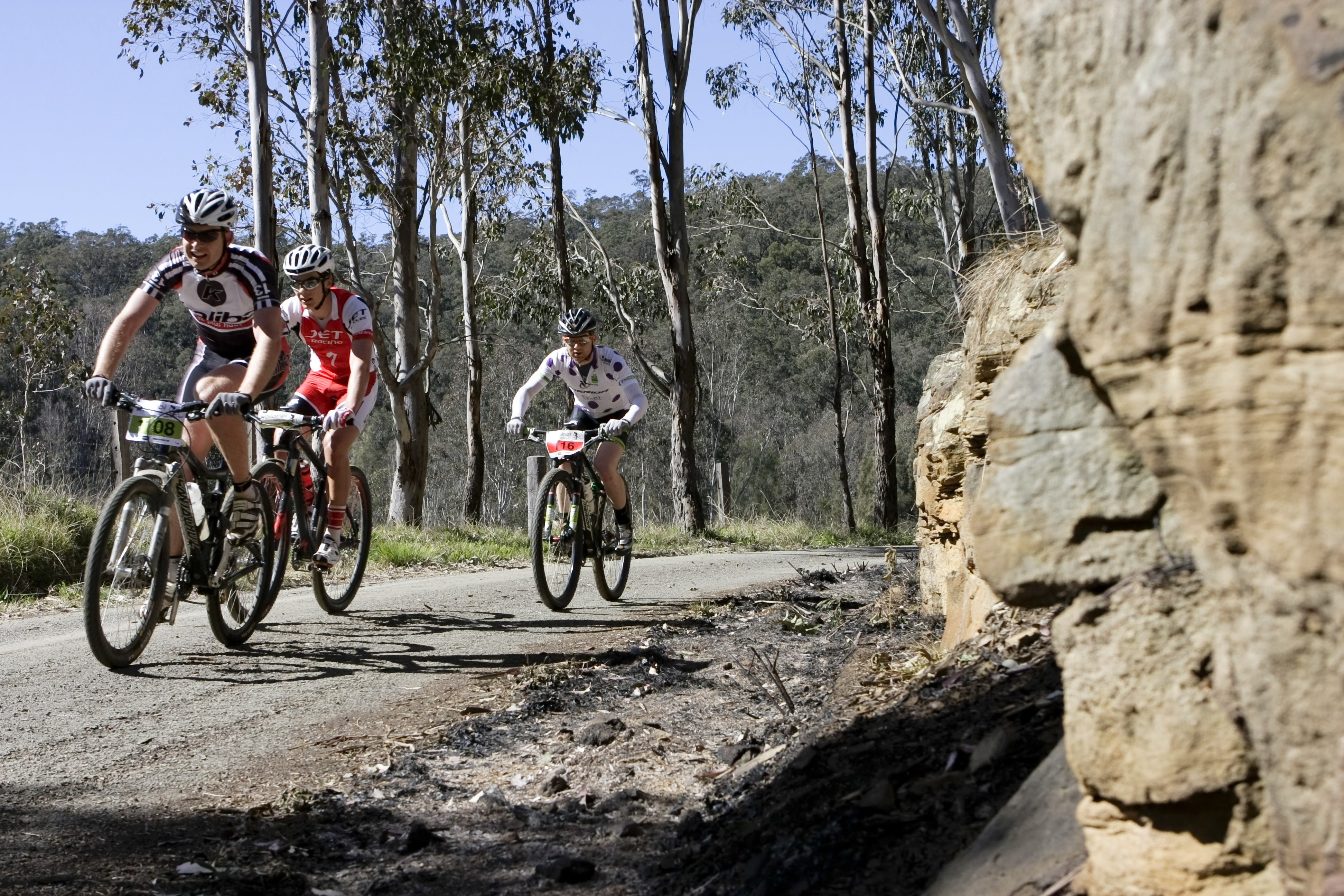 Wollombi Wild Ride Mountain Bike Ride - Tourism Gold Coast