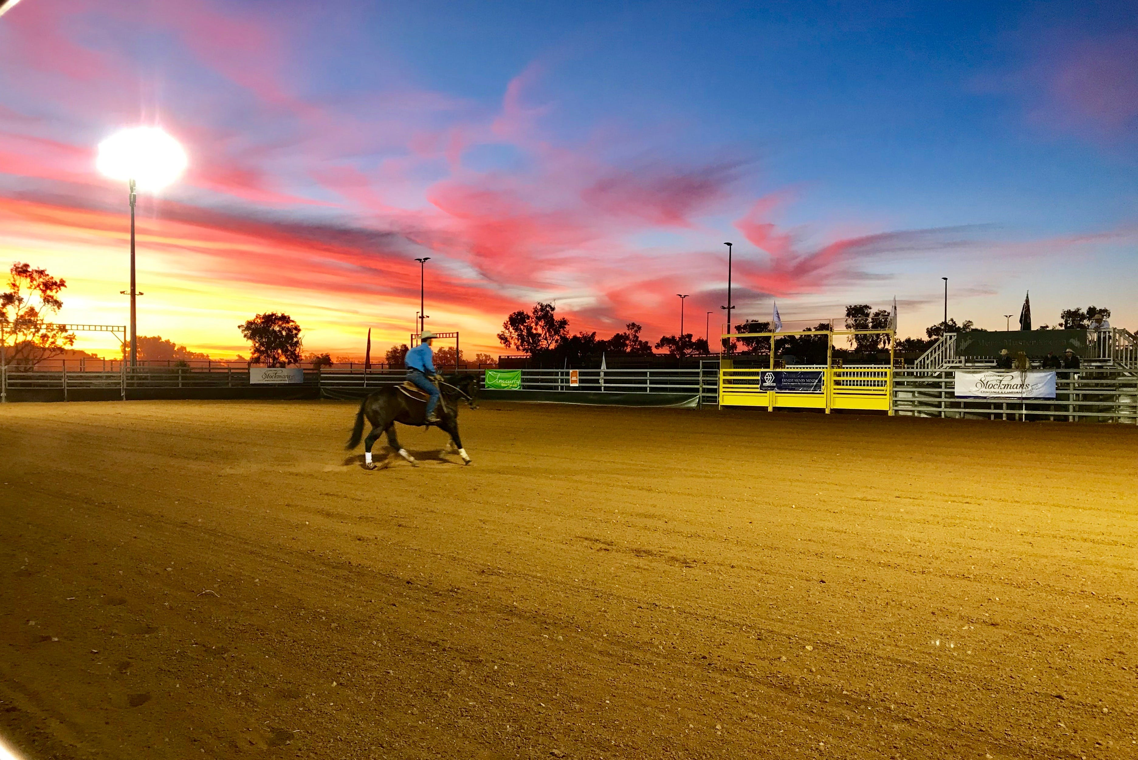 Cloncurry Stockmans Challenge and Campdraft - Tourism Gold Coast