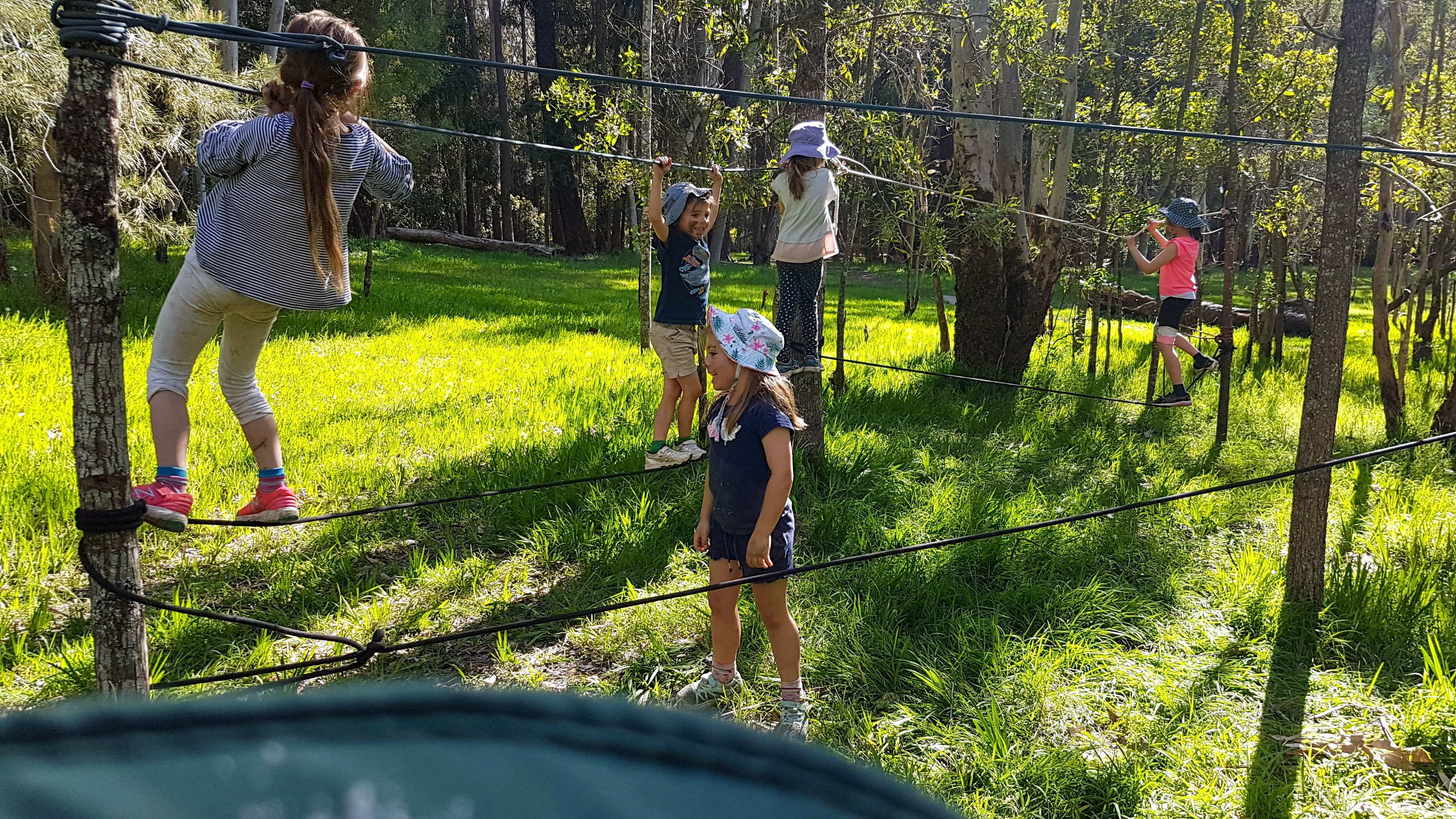 July 2020 Holidays- Forest Smores  Explore - Tourism Gold Coast