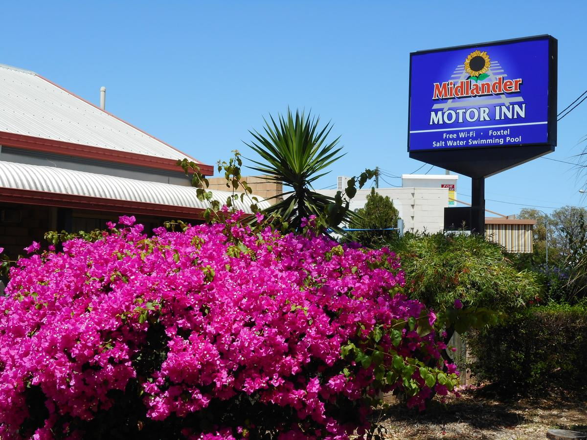 Midlander Motor Inn - Tourism Gold Coast